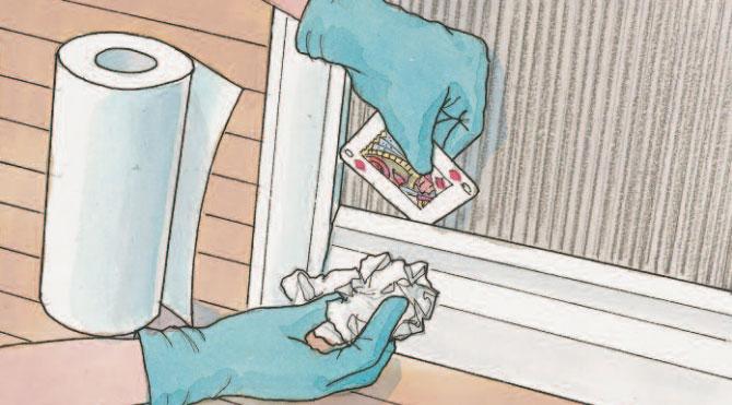 Cimice da materasso 28 images punture cimici dei letti - Cimici letto punture ...