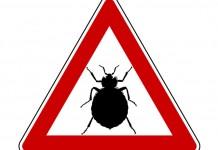 Coprimaterasso antiacaro certificato e detraibile - Cimici da letto rimedi naturali ...